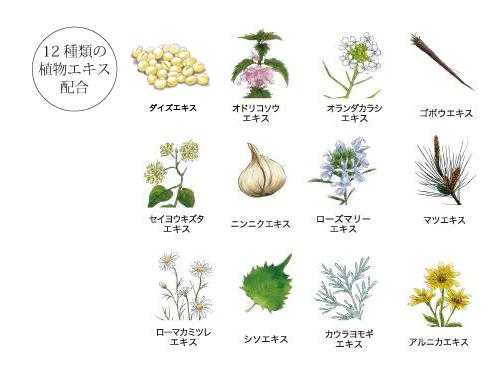 12種類のハーブ配合のミュナスナチュラルシャンプー