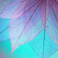 植物由来のボタニカルカラーはヘナやイルミナカラーと何が違うの?白髪でも染まる?